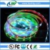 30 LEDs/m SMD5050 Festival Magic LED strip