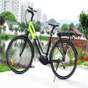 Durable Product MID Motor Mountain Electric Bicycle
