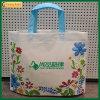 Reusable Supermarket Shopping PP Non Woven Bag (TP-SP573)