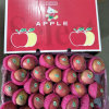 Fresh Unbagged Qinguan Apple