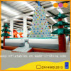 Indoor Inflatable Rock Climbing Mountains (AQ1910)