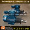 Yonjou Acid Resistant Pump