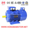 Hmvp Three Phase Frequency-Variable & Speed-Regulation Indunction Electric Motor Fs180L-4p-22kw