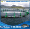 Ocean Fish Farming Net Cage Deep Water Salmon Breeding Equipment