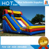 Outdoor Water Park Giant Inflatable Slide for Adult