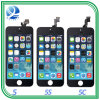 Mobile Phone LCD Screen for iPhone 5s/6 Plus/6s Plus/7