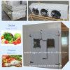 Medium Size Indoor Cold Room Chiller and Walk in Freezer
