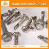 DIN7504k Ss304/316 Hex Wafer Head Self Drilling Screw