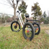 Fat Tire Three Wheel E Trike