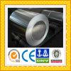 Aluminium Foil / Aluminium Strip