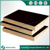 Waterproof Hardwood Film Faced Plywood/Marine Shuttering Plywood for Building
