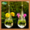 Hanging Glass Vase Home Decor Vase