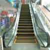Automatic Escalator Type and Escalators Companies Vvvf 1000mm Step