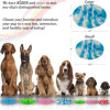 Hot Sell Pet Slow Feeder Silicone Dog Bowl