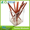 Hot Sale Classic Design Acrylic Gold Pencil and Pen Holder