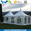 6X6m Outdoor Party Pagoda Tent for Sale