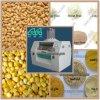 Grain Flour Mills