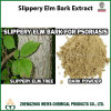 China Origin Slippery Elm Bark / Ulmus Rubra Powder Extract 5: 1, 10: 1