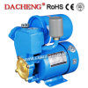 PS130 Automatic Water Pumps for Water (PS-130AUTO)
