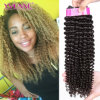Yvonne Brazilian Kinky Curly Virgin Hair Weave