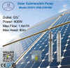 3in Submersible Stainless Steel Solar Pump for Irrigation