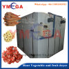 Hot Air Tray Type Automatic Fruit and Vegetable Dryer