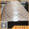 Various Colored Laminated Film Faced Plywood with Waterproof Glue