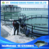 Fish Farming Net Cage, Aquaculture Floating Cages, Aquaculture Sea Cages