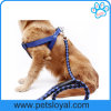 Amazon Ebay Hot Sale Nylon Pet Dog Harness Leash
