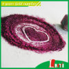 Top 10 China Glitter Powder Supplier for Garment Accessories