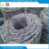 Double Line Galvanized Barbed Iron Wire