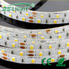 30PCS/M 5050 RGB Flexible LED Strip for Christmas Decoration