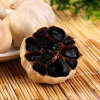 Good Taste Fermented Black Garlic 6 Cm Bulbs (500g/bag)