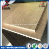 Poplar Core Okoume /Bintangor /Birch Veneered Commercial Plywood