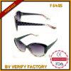 F6405 Hot Sale Cazal Sunglasses Prius Sunglasses