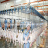 Full Set Automatic Chicken Slaughter Workshop Equipment