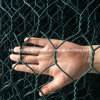 Bwg 25 Hexagonal Wire Netting/ Galvanized Hexagonal Wire Mesh (kdl-61)