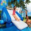 Large Kids Toys Outdoor Ce Inflatable Water Slide for The Pool