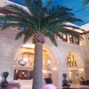 Wholesale Market Artificial Date Palm Tree for Decorative (indoor&outdoor)