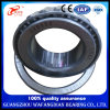 Large Lead Cheap Taper Roller Bearing 32005 for Mine Industry