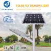 150W LED Solar Products LED Street Light for Village
