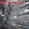 Hot DIP Galvanized a Type Broiler Chicken Cage with Automatic Drinker System
