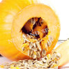Natural and Best Gws Pumpkin Seed AA to Amercial