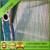 Best Olive Harvest Nets and Olve Netting Exporting to Tunisia and Greece