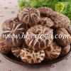 High Quality Spring Cultivated Dried Tea Flower Mushroom