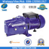 Best-Selling Self-Priming Jet Pump (JET-100L)