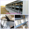 Insulting Panel Door Poultry House with Matching Steel Constrution