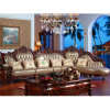 Luxury Italy Leather Sofa with Wood Sofa Frame (D807)