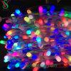 Holiday Lighting LED Clip Light with 12V 100m 666bulbs