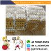 Safety Gh Peptides Argipressine for Sex Enhancer 113-79-1